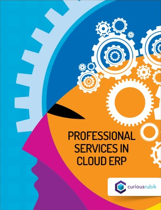 Professional_Services_in_Cloud_ERP.png