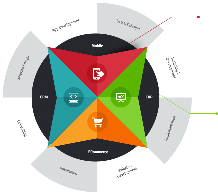 NetSuite CuriousRubik Services.png